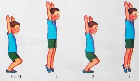 Комплекс утренней гимнастики с картинками
