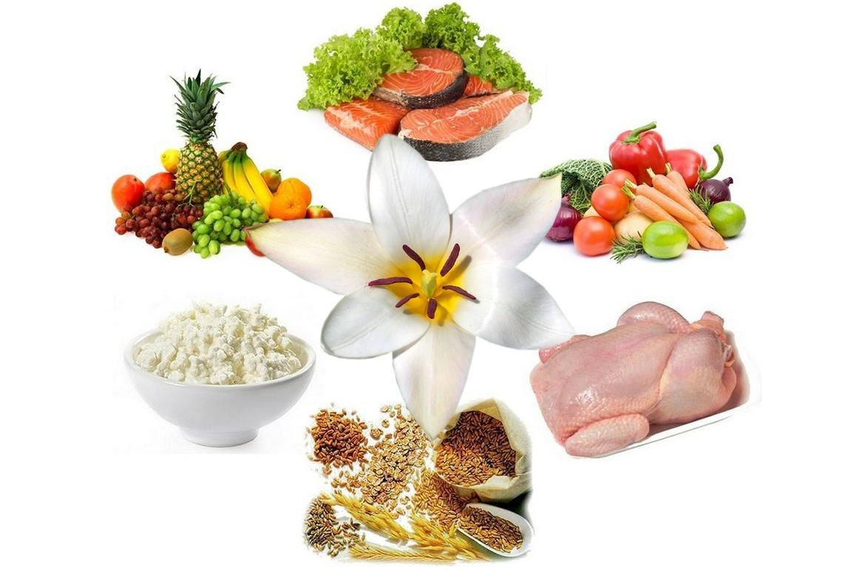 Составить бесплатную индивидуальную диету
