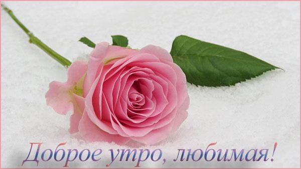 пожелание доброго утра любимой