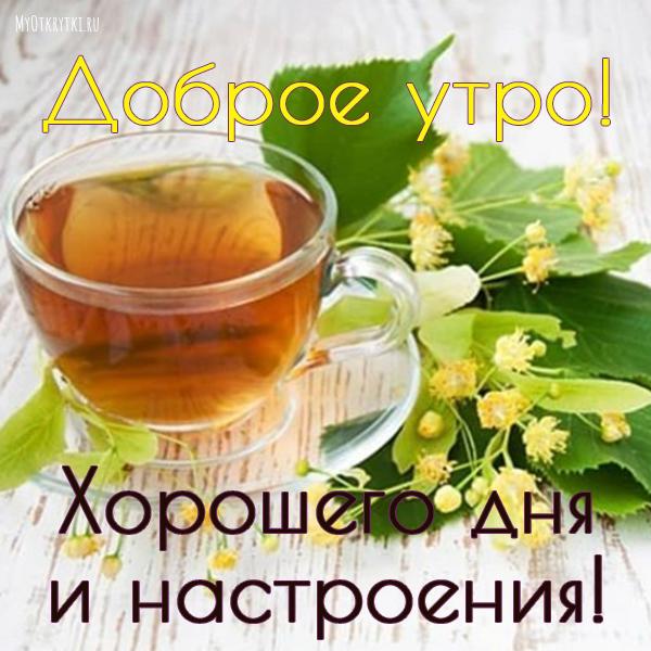Доброе утро и хорошего дня и прекрасного настроения мужчине