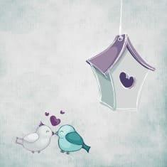 Отношения между двумя птичками